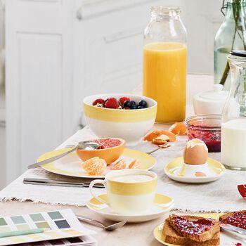 Colourful Life Lemon Pie Set