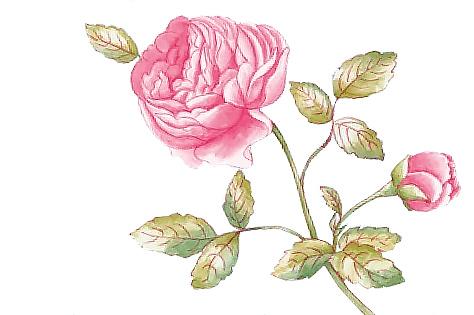 Rose Cottage Lebensfreude Auf Dem Tisch Villeroy Boch